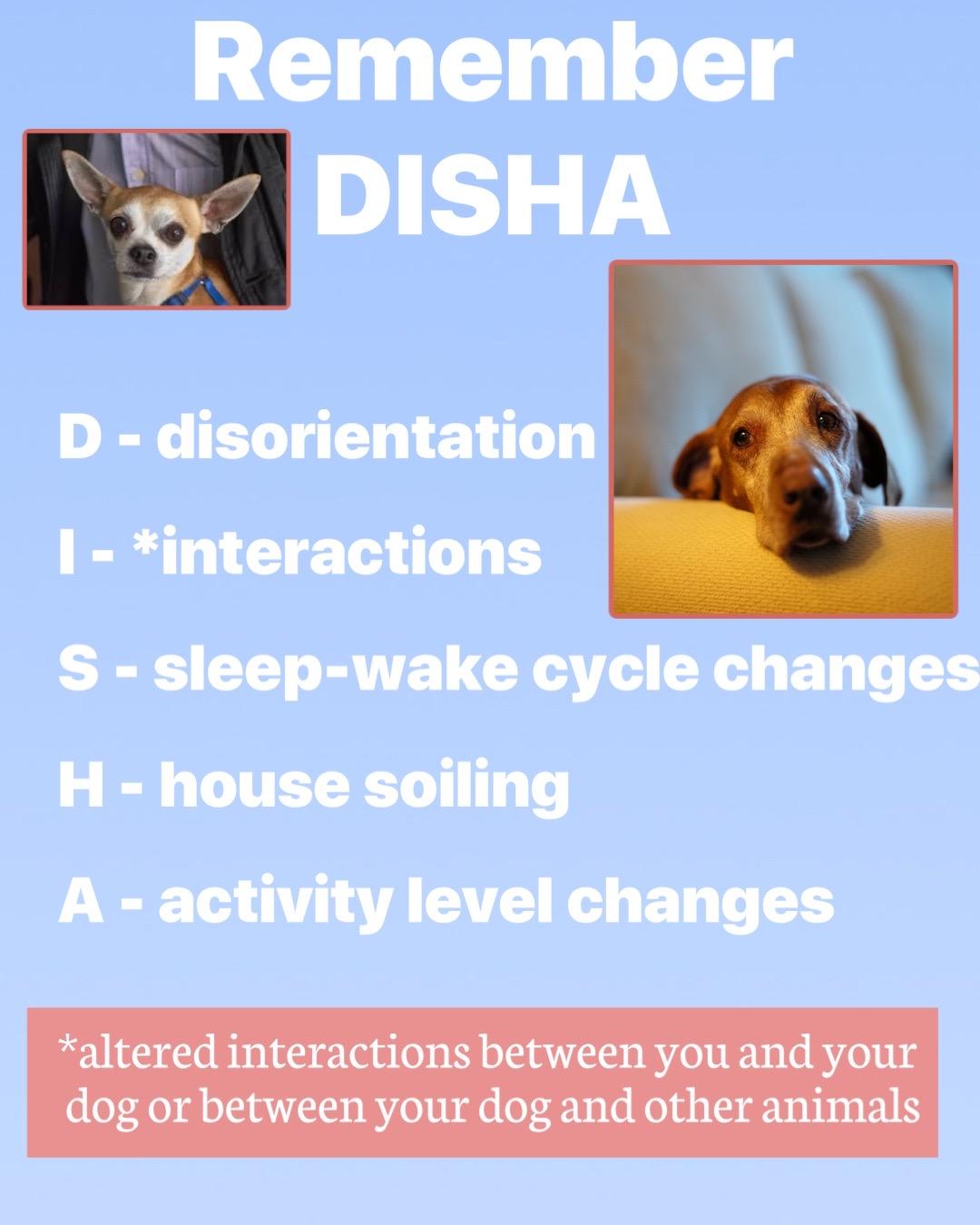DISHA acronym