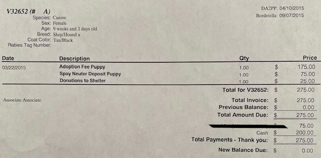 pet adoption fee