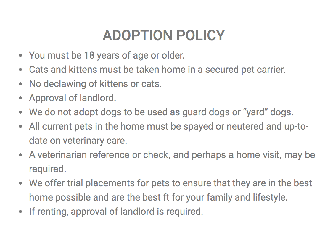 adoption policy