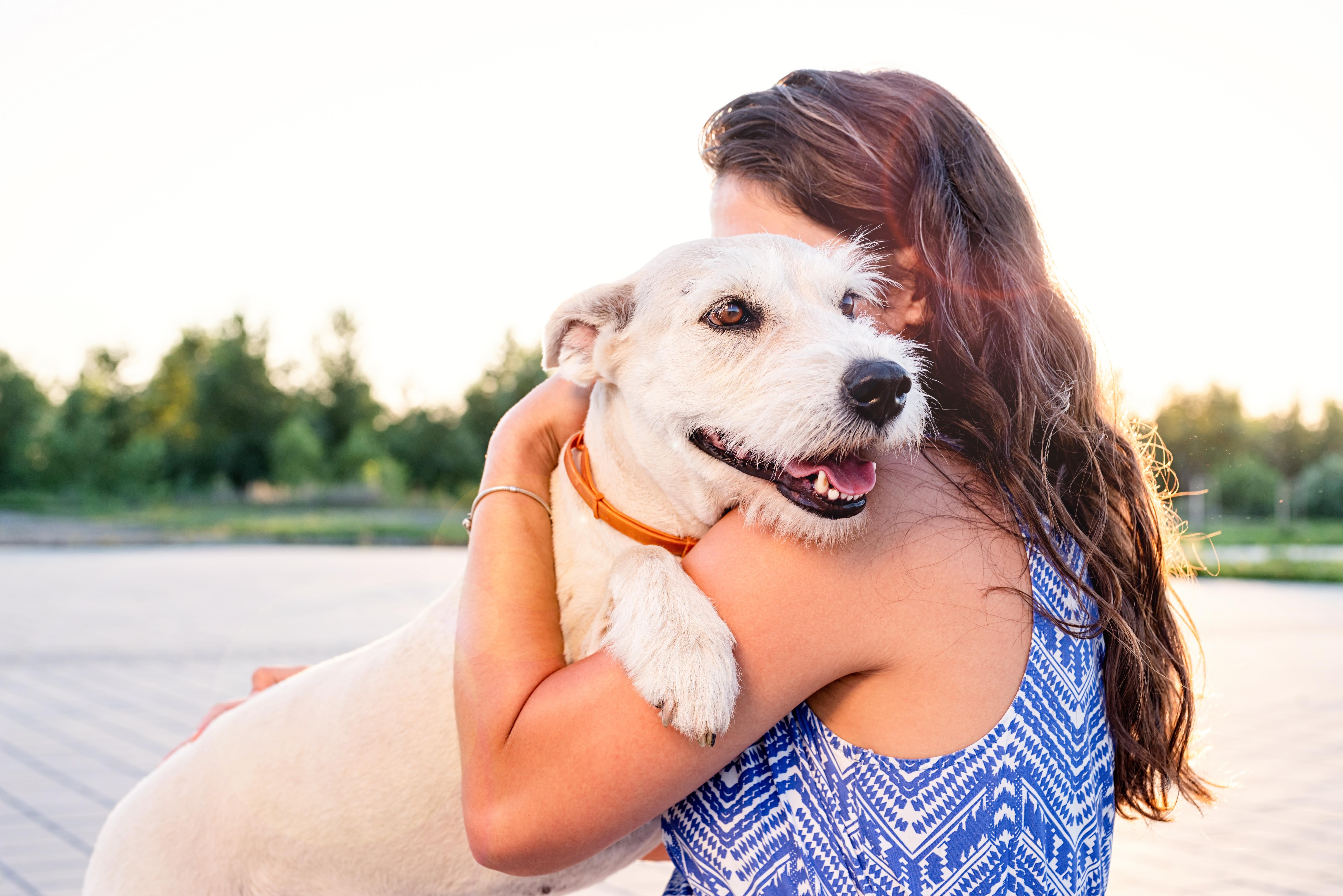happy dog and owner hugging after adoption